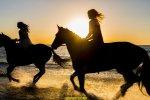 kobiety na koniu