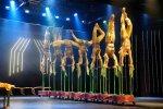 show akrobatyczne
