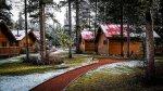 domki letniskowe w lesie